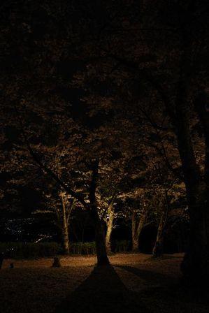 AZUMINO_20120501_9.JPG