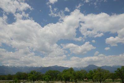 AZUMINO_20120505_2.JPG