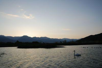 AZUMINO_20120513_7.JPG