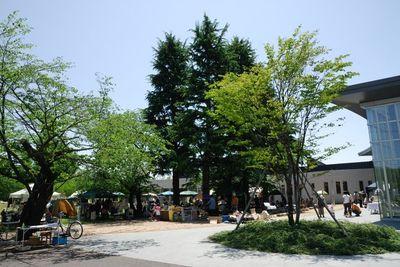 AZUMINO_20120519_2.JPG