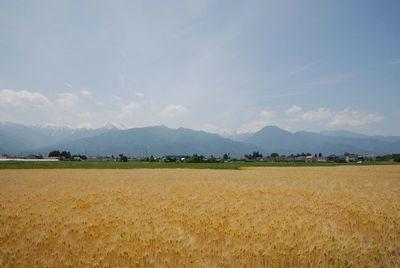 AZUMINO_20120604_2.JPG