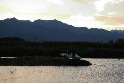 AZUMINO_20120620_7.JPG
