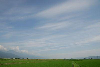 AZUMINO_20120627_2.JPG