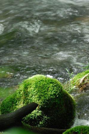 AZUMINO_20120716_5.JPG