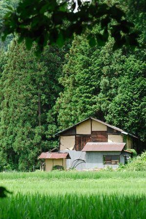 AZUMINO_20120716_8.JPG