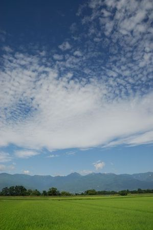 AZUMINO_20120717_1.JPG
