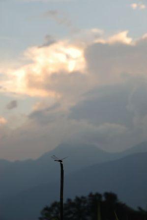 AZUMINO_20120825_5.JPG