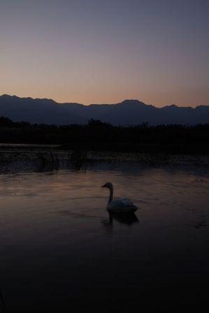 AZUMINO_20121021_2.JPG