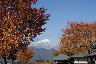 AZUMINO_20121116_4.JPG