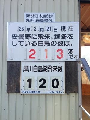 AZUMINO_20130321_1.JPG