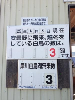 AZUMINO_20130408_5.JPG