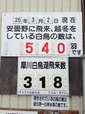 AZUMINO_20140302_5.JPG