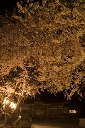 AZUMINO_20140417_08.JPG