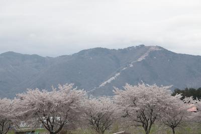 AZUMINO_20140421_01.JPG