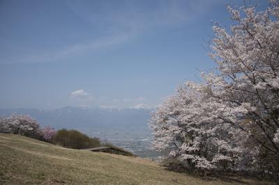 AZUMINO_20140427_02.JPG