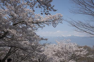 AZUMINO_20140427_04.JPG
