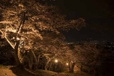 AZUMINO_20140428_02.JPG