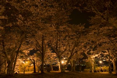 AZUMINO_20140428_03.JPG