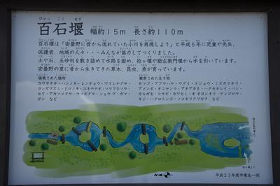 AZUMINO_20140511_20.JPG