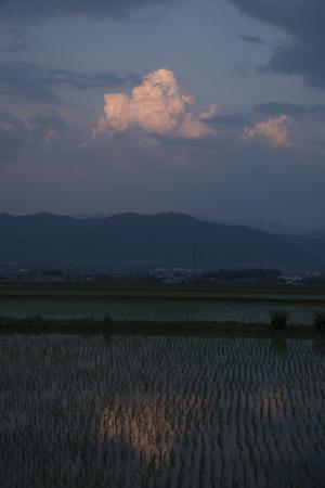 AZUMINO_20140530_03.JPG