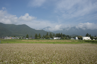 AZUMINO_20140630_05.JPG