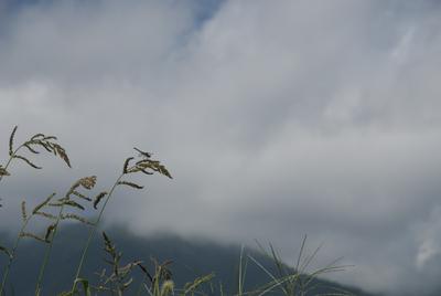 AZUMINO_20140820_02.JPG