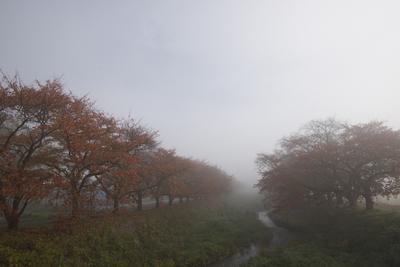 AZUMINO_20141108_01.JPG