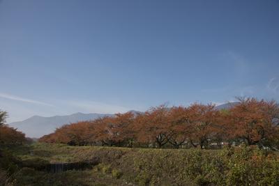 AZUMINO_20141108_09.JPG
