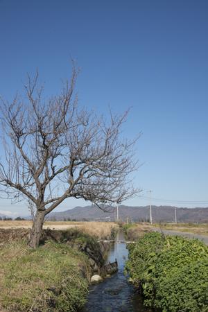 AZUMINO_20141122_13.JPG