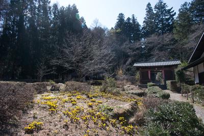 AZUMINO_20150325_03.JPG