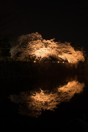 AZUMINO_20150409_06.JPG