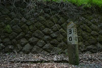 AZUMINO_20150505_16.JPG