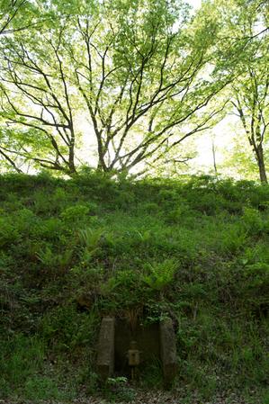 AZUMINO_20150505_47.JPG