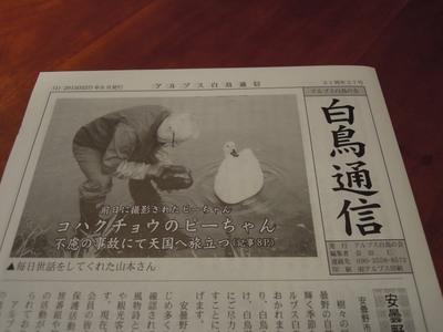 AZUMINO_20150623_002.JPG