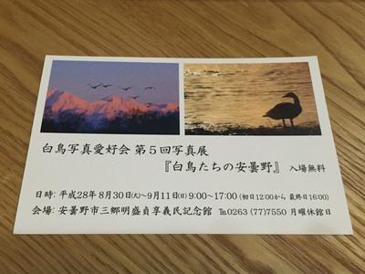 AZUMINO_20160812_1.JPG