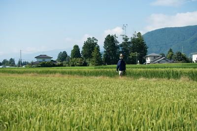 azumino_20160801_02.JPG