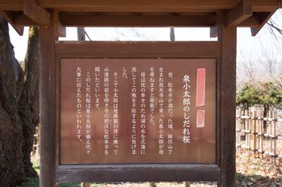 azumino_20180317_04.JPG