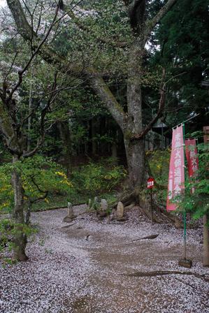 AZUMINO_20080426_2.jpg